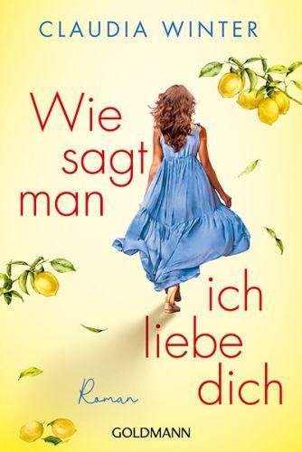 Bucheinband:Wie sagt man ich liebe dich : Roman